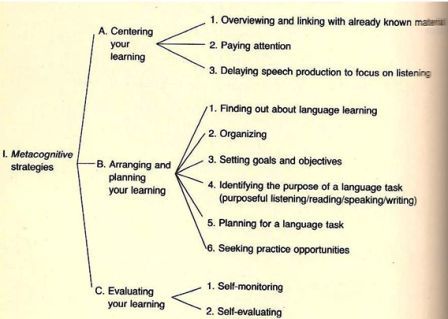 Types of learning strategies  How to cope with a foreign